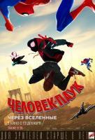 Человек-паук: Через вселенные 2D